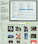 Suggestion for Gallery Info by FantasyStock