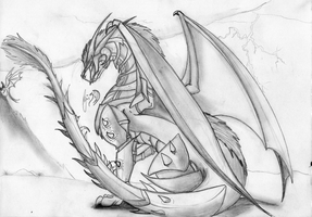 Farhda: Dragon of the west by angelswake-tf