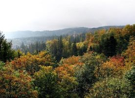 Autumnal landscape by LukaOokami