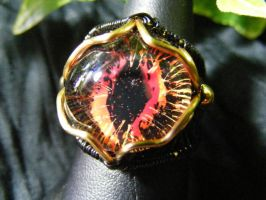 Fire Wing Ring by BacktoEarthCreations