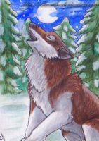 ACEO: My winter song by Eleweth