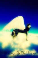 All Dogs Go To Heaven by GlorySky