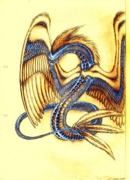 Amphithere - blue/gold by DarkSilverTiger