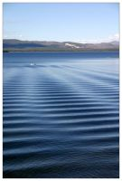 Upon Lake Yellowstone by gindrex