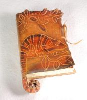Chameleon Diary by gildbookbinders