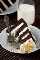 Choc Coconut Milk Cake 1 by bittykate