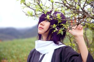 Hakuouki: Saitou_Looking for spring by SilverPhoenixVN