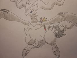 Ash and Pickachu on Reshiram (colored) by Spyroconvexity