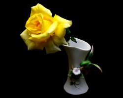 vase and yellow rose by tea