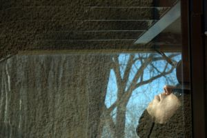 Mg 7530 by FigoTheCat
