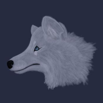 Realistic wolf head by xlaurabevx