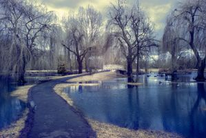 Infrared flooded park by photographybypixie