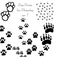 Paw Prints brushes by Songficcer