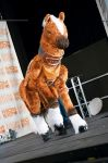 Epona quadsuit SOLD by MadHamsterCostumes