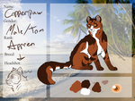 Copperpaw App Summerclan by wolven13
