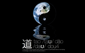tao by SL05NED