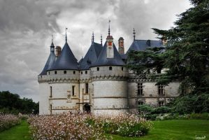 Chateau de Chaumont by crirox