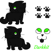 Darkkit Character Sheet by MarsieZeWerewolfie