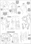 Muscle Tutorial - The Torso by DerSketchie