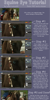 Equine Eye Tutorial by CoutureEquineDesigns