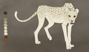 Saharan Cheetah: Gauss by pinemartenartin