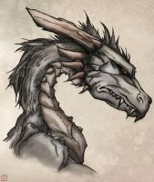 Durebal :: The Black Dragon by Koboshimaru