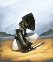 Knight in the desert by Taaks