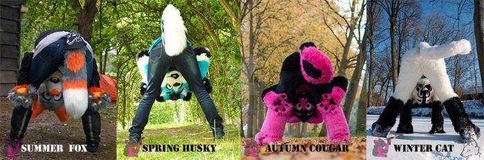 Seasons of Silly by FurryFursuitMaker