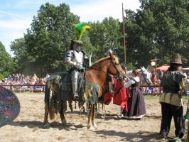 Ren Fair 6 by ItsAllStock