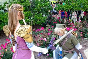 Otakon 2014 - Twilight Princess(PS) 19 by VideoGameStupid