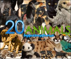 20 Animals PNG's by queensofnoise