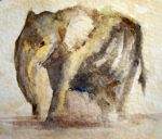 Baby Elephant by Obs3ss1On