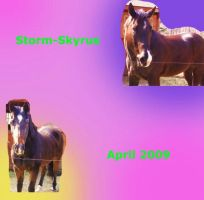 April 2009 ID by Storm-Skyrus