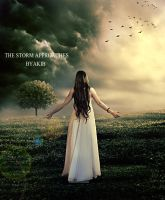 The Storm Approahes by umbatman