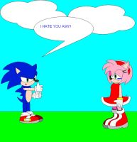 sonic hate amy by icethehedgehog11