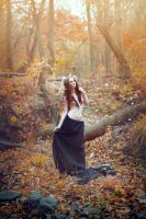 tale of autumn by vvola