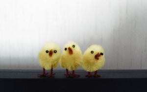 Three Hot Chicks by Warma