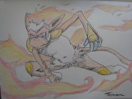 Infernape by tomon000