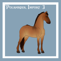 Polharder Import 3 by blanjojo