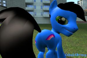 I updated my GMod model. by CobaltBrony