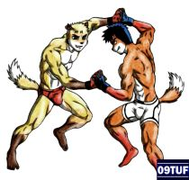 Ray vs Vicente - Color -  Trade by 09tuf