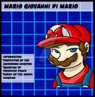 Data Card- Mario by SladeJT