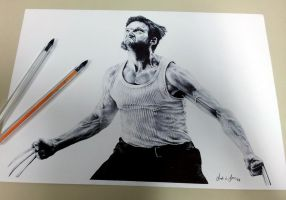 Wolverine Ballpoint by andre-assis