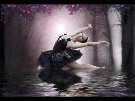 Black Swan's Dance... by tasa78