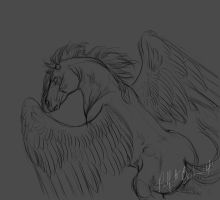 Winged Horse Sketch by PadfootBrush