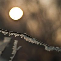frozen sun by PatiMakowska