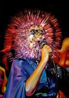 Bjork by picasio