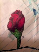 Rose Bud by WolvesHowl457
