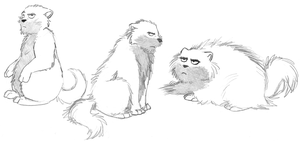 Fluffy, fluffier and fluffiest by LorinaDante