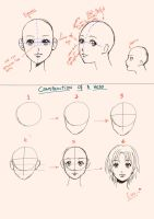 Manga Lesson 1 - Basic head by Ariana-Aerith